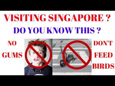 Singapore Laws | Crazy Singapore Laws