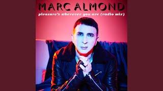 Pleasure's Wherever You Are (Radio Mix)