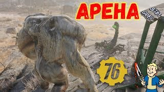 fallout 76: АРЕНА Первый Пробный Выпуск