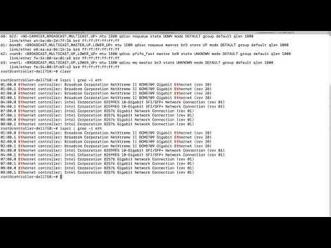 Run DPDK testpmd application to send tens millions of packet