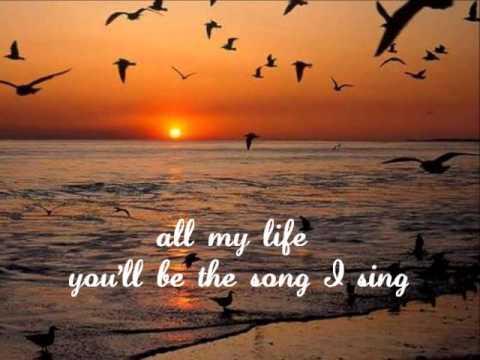 IF I SHOULD LOVE AGAIN - (Lyrics)