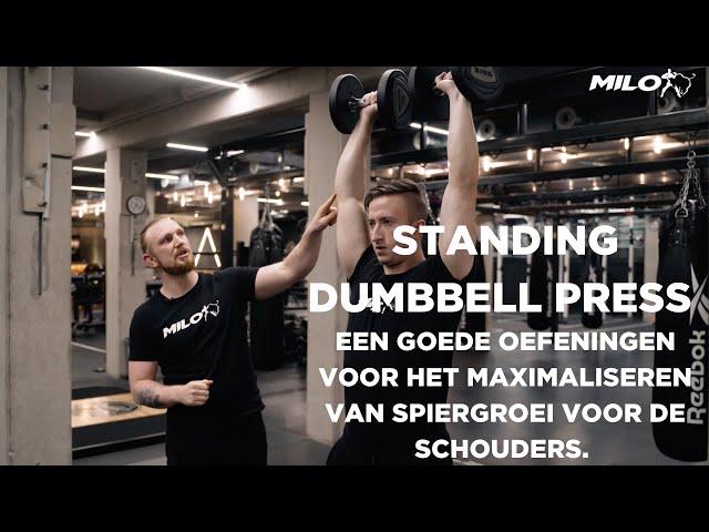 Standing Dumbbell press