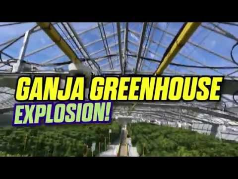 The Greenhouse Explosion – March 2015