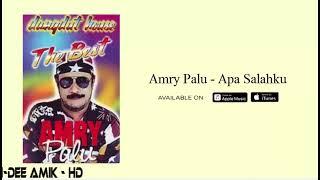 AMRY PALU DISCO DANGDUT 2021