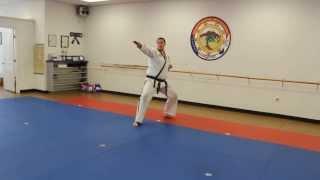 EMA White-Yellow Belt Form Slow Version