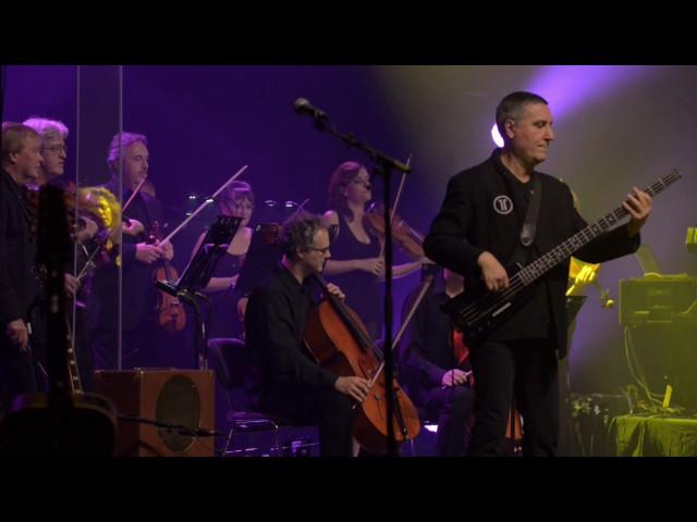 MACHIAVEL FETE SES 40 ANS AVEC L'ORCW - Concert de clôture - LIVE - (POP-ROCK)