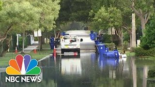 Toxic Invasion In One Of America's Most Beautiful Beach Destinations | NBC Nightly News