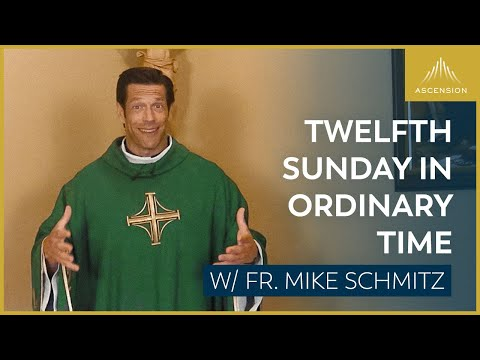 Twelfth Sunday in Ordinary Time - Mass with Fr. Mike Schmitz