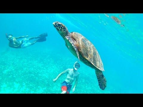My Gili Trawangan & Lombok experience