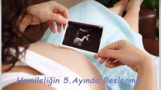 Hamileliğin 5. Ayında Beslenme