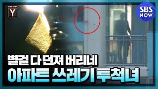 [궁금한 이야기 Y] 요약 '4년 동안 아파트 창문으로 쓰레기 던져 버리는 범인의 정체는?' / 'Y-Sto…