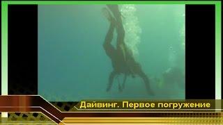 Водные развлечения. Первое погружение #1. Дайвинг в Красном море, отдых в Египте. Начинающие дайверы(Первое погружение #1. Дайвинг в Красном море, отдых в Египте. Начинающие дайверы. Водные развлечения. Смешные..., 2009-12-19T14:31:28.000Z)
