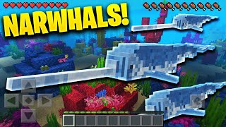 Narwhal in Minecraft Pocket Edition