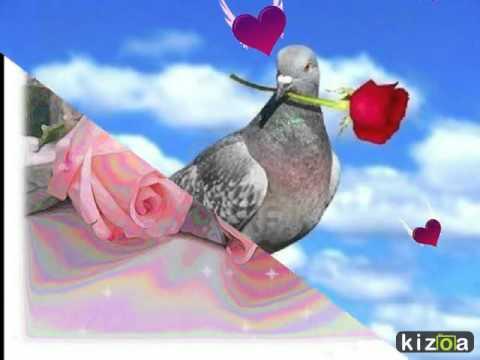 montage-vidéo-kizoa:-les-rose-sont-les-fleurs-de-l'amitié