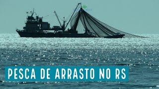 O risco da volta da pesca de arrasto no Rio Grande do Sul