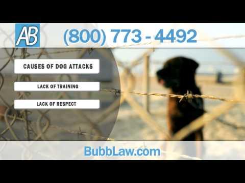 Dog Bite Injury Attorney in Colorado Springs | Andrew Bubb