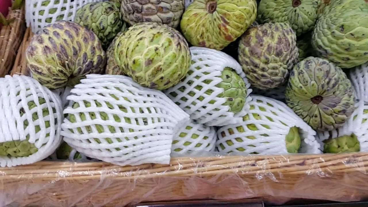 اسم فاكهة القشطة بالانجليزي 15