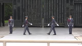Changing of the Guards 💂 Imperial Palace Tokyo, Japan