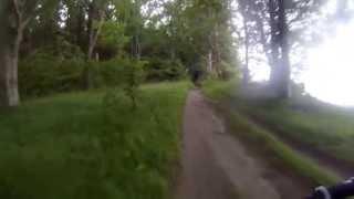 JesperO i skoven