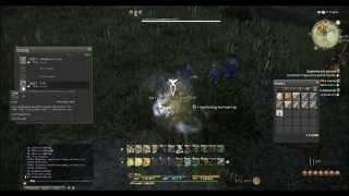 Final Fantasy 14: Gil Potential of Botany South Shroud
