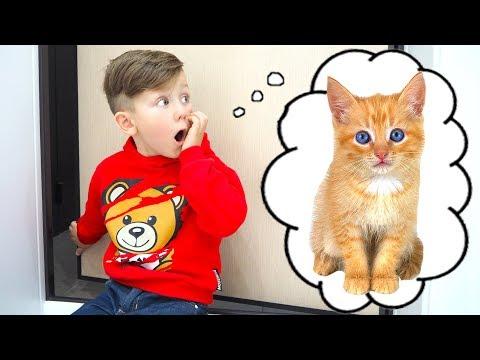 Вопрос: Приблудился на даче котенок, скоро уезжать, взять не могу, как быть?