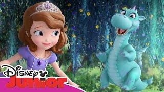 Musical Magical Moments - Sofia la Principessa - Fiamma e il canto