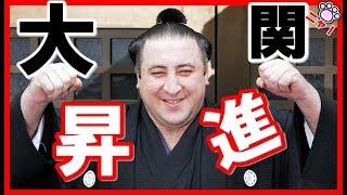 【日本ニャンダフル】ごニャンいただきありがとうございます。(=^・ω・^=)...