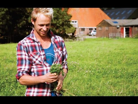 'CAP, What's cooking?' First farmers' portrait: Farm in Netherlands