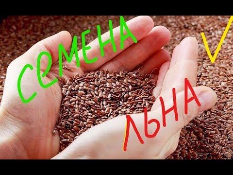 Семена льна, польза и вред, как принимать для похудения
