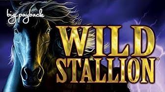 15X MULTIPLIER! Wild Stallion Slot - NICE SESSION, LOVE IT!