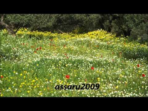 Drifa - aqlagh dhugahriq -