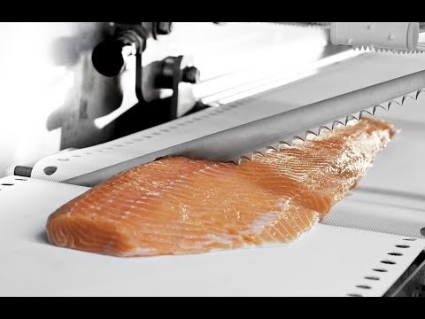 AMAZING Food Cutting Machine - Salmon Processing With Marel Fish Machines