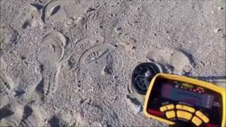На пляж за ништяками с металлоискателем!