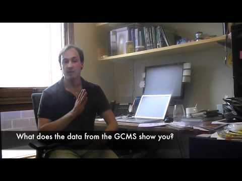 What does the data from a GC-MS look like?