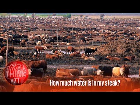 Die globale Wasserkrise