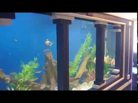 DIY 1150 gallon plywood aquarium Part 2