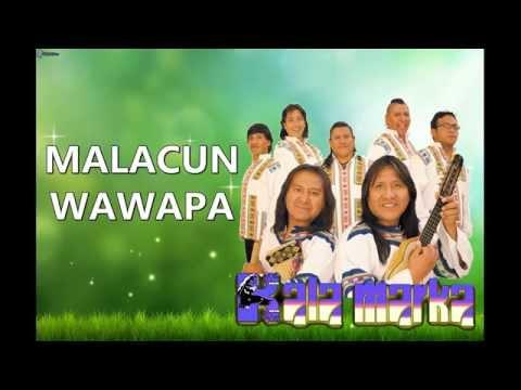 kalamarka-malacun-wawapa-letra-abya-yala-bolivia