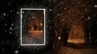 Падал белый снег -  Илья Петровский