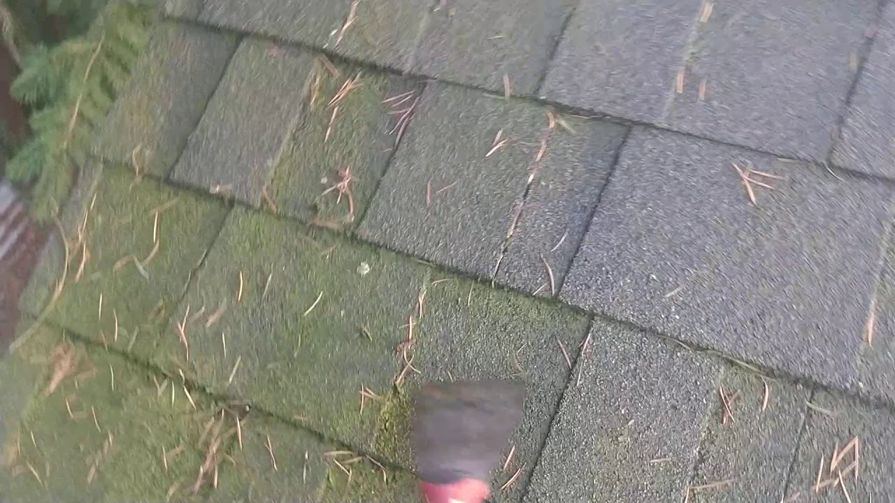 Do Zinc Strips Actually Prevent Roof Moss From Growing Youtube