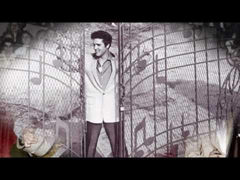 Please Love Me - Elvis Presley