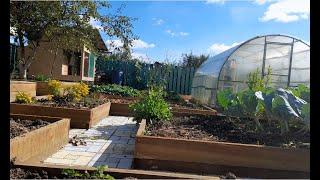 Высокие теплые грядки увеличат урожай всего. Мой огород мечты!!!