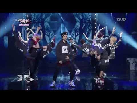 EXO - 늑대와 미녀(WOLF)(KOREAN VER.)應援