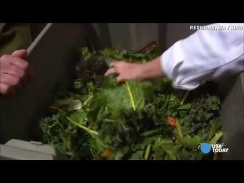 Machine turns rotten veggies into fertilizer