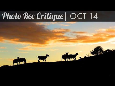 Photo Critique: October 14 - Fewer Sheep