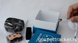 GPS ошейник для собак и кошек Smart Pet Tracker. Комплектация, инструкция, настройка