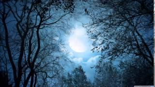 Dark Sanctuary - De Lumière Et D