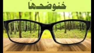 برنامج خنوضحها - د. صلاح الراشد - المعرفة - 14