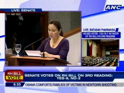 Legarda: #RHbill offers small measure of support to make sure access of information