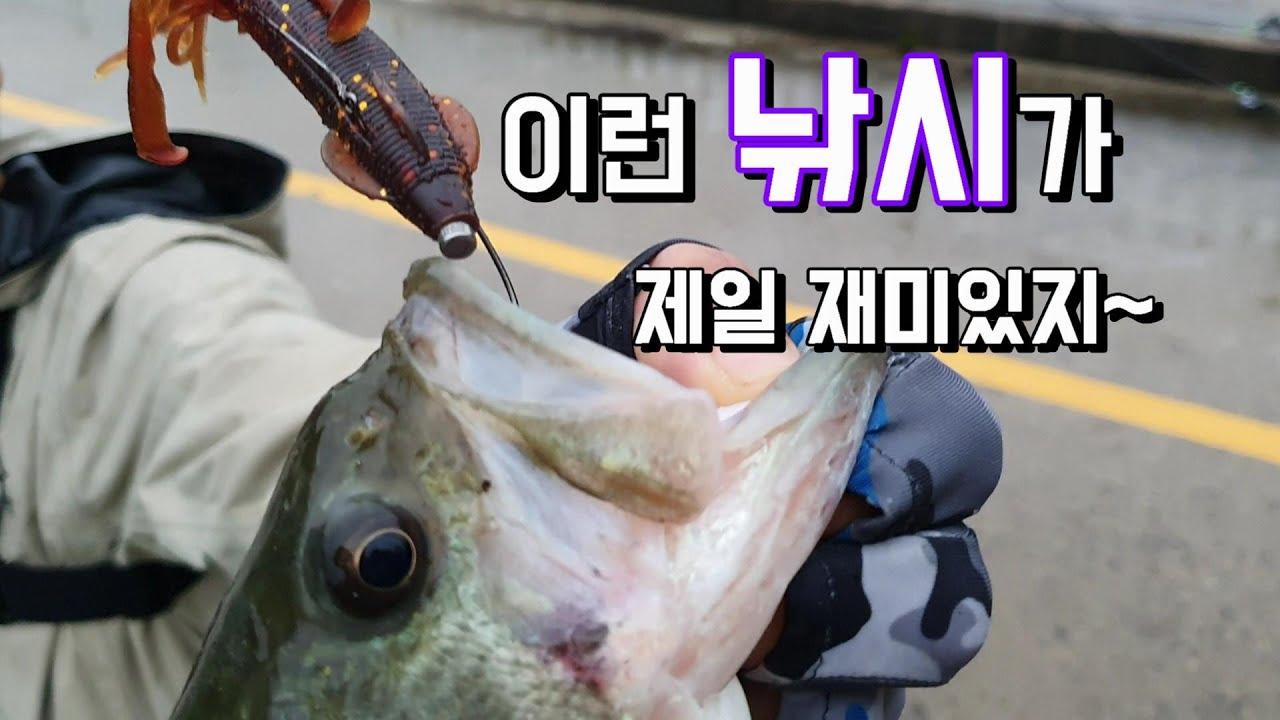 """배스낚시""""수몰버드나무 공략의정석!!""""/BASSFISHING"""