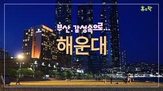 [4K] 휴&락 [부산, 감성속으로...]_해운…